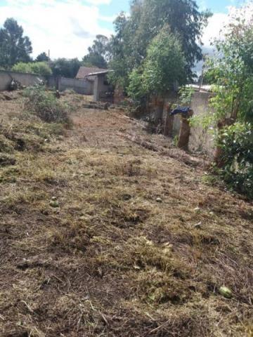 Terreno para venda em quatro barras, jardim das acácias, 2 dormitórios, 1 banheiro - Foto 2