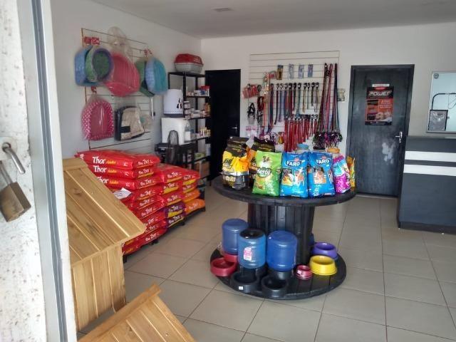 Vende-se este pet shop - Foto 7