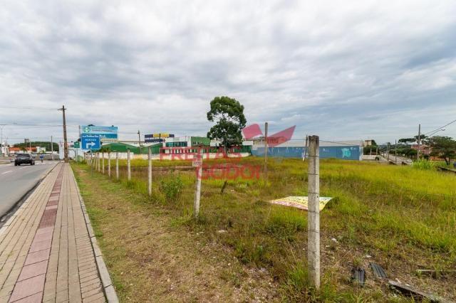Terreno para alugar no Centro - Pinhais/PR - Foto 11