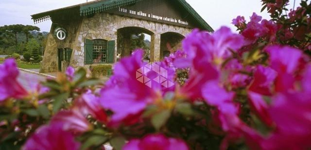 Apartamento à venda com 1 dormitórios em Centro, Gramado cod:9922024 - Foto 12
