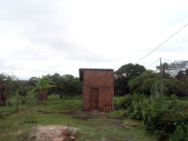Terreno no farol do araçagi. loteamento palmeira - Foto 2