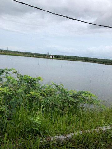 FZ00- Vendo Fazenda Camarão Itapipoca Ceara  - Foto 8