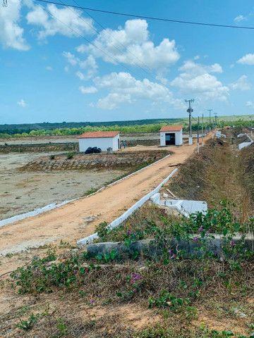 FZ00- Vendo Fazenda Camarão Itapipoca Ceara  - Foto 18