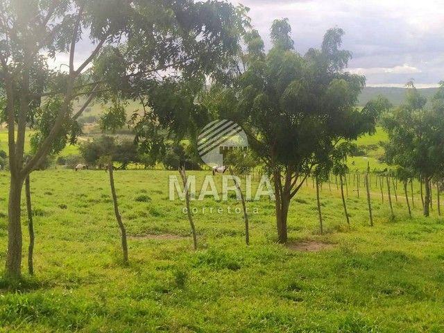 Haras á venda com 40 Hectares em Mandacaru - Gravatá/PE! - Foto 19