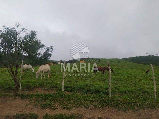 Haras á venda com 40 Hectares em Mandacaru - Gravatá/PE! - Foto 20