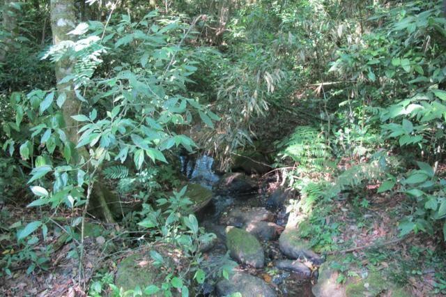 Área imperdível R$100.000,00 o alq. de planta/R$50.000,00 bosque e rio - Foto 5