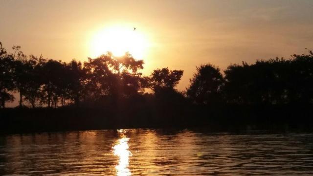 Chácara de 2 hectares em barão de melgaço, nas margem do rio! - Foto 7
