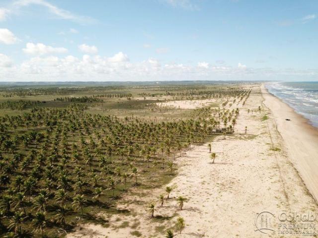 Grande área na barra dos coqueiros, a beira mar