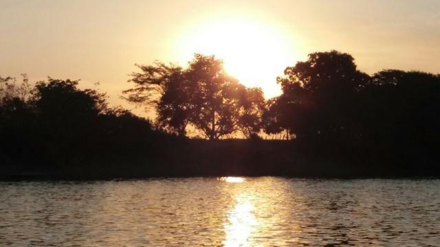 Chácara de 2 hectares em barão de melgaço, nas margem do rio! - Foto 5