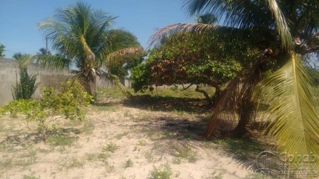 Sitio no povoado são jose - Foto 7