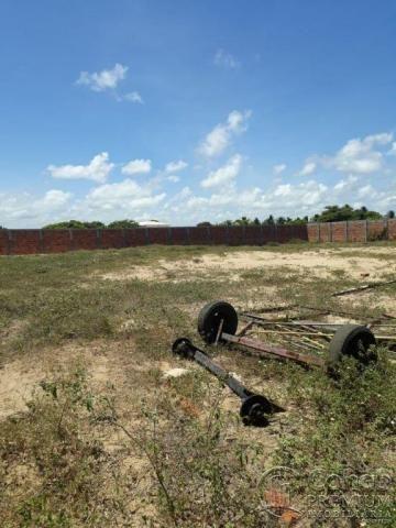 Terreno no povoado matapuã, bairro mosqueiro - Foto 7
