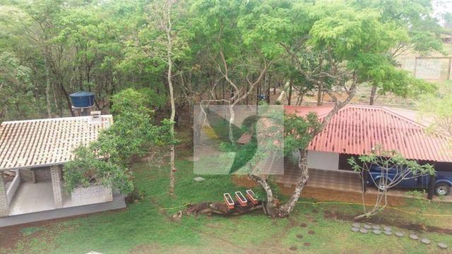 Chácara com 3 dormitórios à venda, 20000 m² por r$ 1.350.000,00 - centro - chapada dos gui - Foto 7
