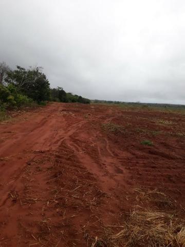 Fazenda de 750 Hectares ?Nova Maringá-MT, Troca imóveis em Campo Novo, Tangara - Foto 3