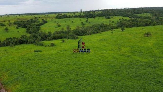 Fazenda à venda, por R$ 40.000.000 - Zona Rural - Rolim de Moura/RO - Foto 10