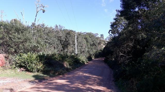Excelente área rural medindo 70.153 m2, São José dos Pinhais - Roça Velha - Foto 4