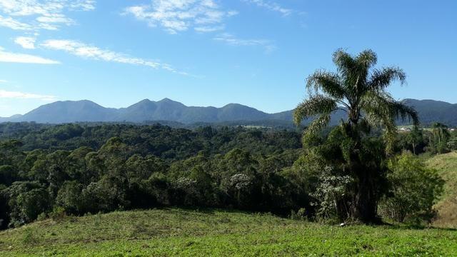 Excelente área rural medindo 70.153 m2, São José dos Pinhais - Roça Velha - Foto 5