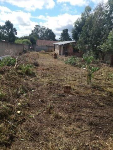 Terreno para venda em quatro barras, jardim das acácias, 2 dormitórios, 1 banheiro - Foto 9