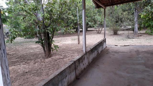 Chácara em Vitorino Freire - Foto 3
