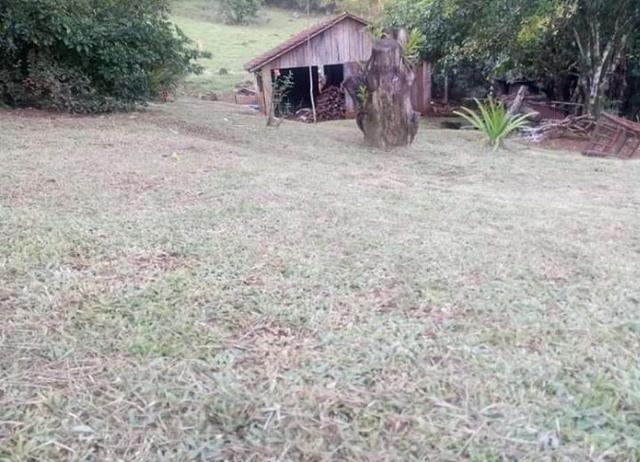 Sítio em Esperança do Sul, RS (AR2125) - Foto 4