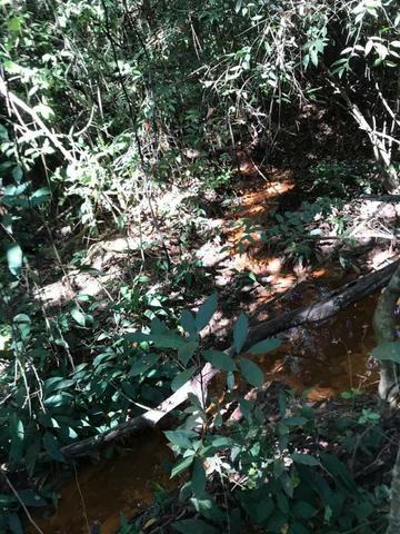 Chácaras com Córrego em Caldas Novas - Foto 15