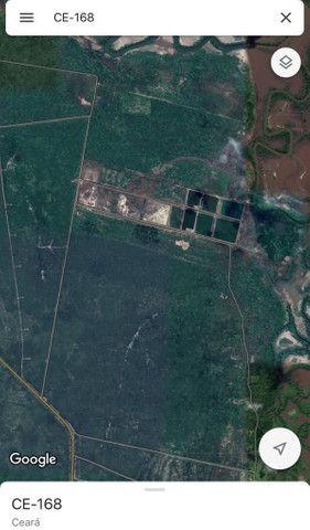 FZ00- Vendo Fazenda Camarão Itapipoca Ceara  - Foto 15