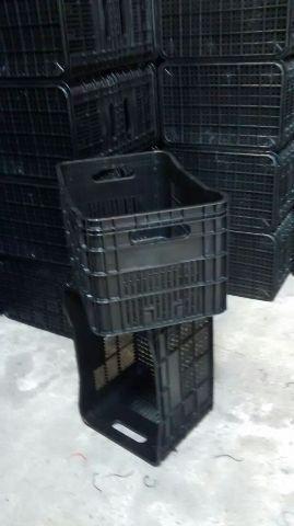 Caixas plasticas hortifrutigranjeiros