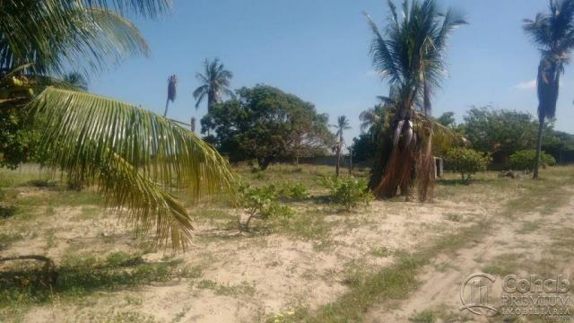 Sitio no povoado são jose - Foto 3