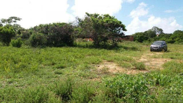 Lote no pov. matapuã. bairro mosqueiro - Foto 5