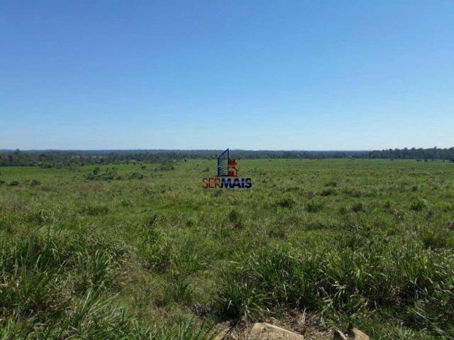 Fazenda à venda, por R$ 40.000.000 - Zona Rural - Rolim de Moura/RO