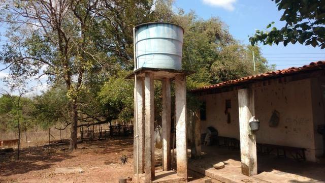 Fazenda em José de Freitas-PI - Foto 13