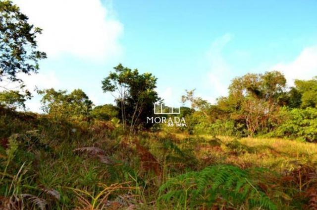 Terreno à venda, 40.920m² por R$ 690.000 - Barra Grande - Maraú/BA - Foto 8