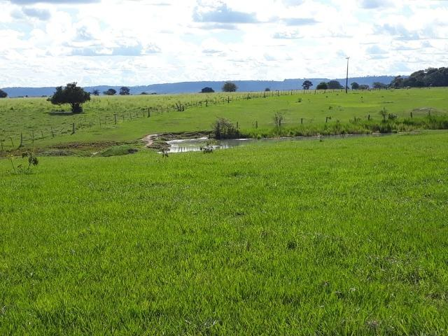 Fazenda em Arenapolis Mato Grasso Terra de Cultura - Foto 8