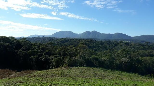 Excelente área rural medindo 70.153 m2, São José dos Pinhais - Roça Velha - Foto 8