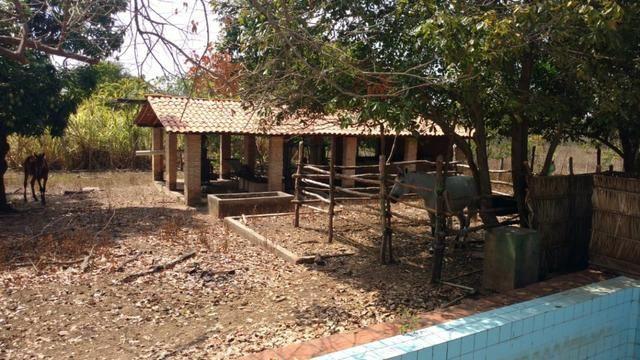 Fazenda em José de Freitas-PI - Foto 3