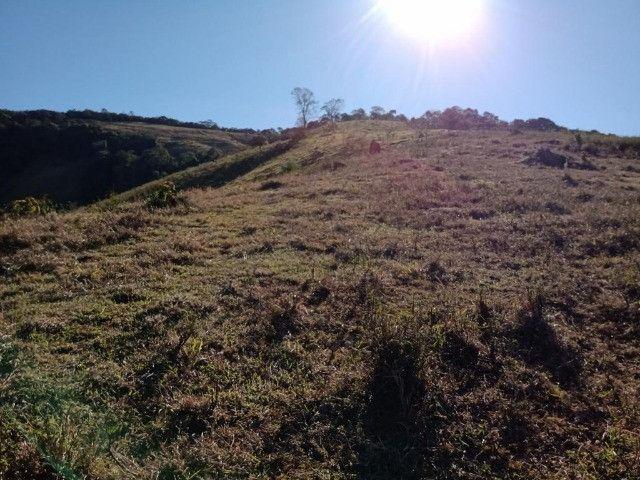 Terreno com 19 hectares cod 03 - Foto 4