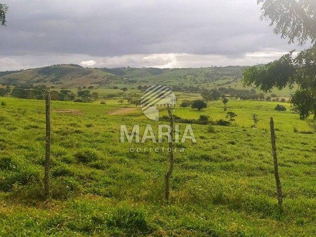 Haras á venda com 40 Hectares em Mandacaru - Gravatá/PE! - Foto 16