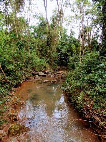 Vende-se belíssima chácara a 14 Km do centro de Cândido de Abreu-PR - Foto 18