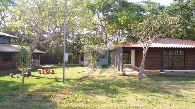 Chácara com 3 dormitórios à venda, 20000 m² por r$ 1.350.000,00 - centro - chapada dos gui - Foto 18