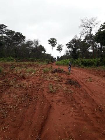 Fazenda de 750 Hectares ?Nova Maringá-MT, Troca imóveis em Campo Novo, Tangara - Foto 2