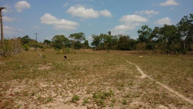 Fazenda em José de Freitas-PI - Foto 17