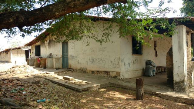 Fazenda em José de Freitas-PI - Foto 4
