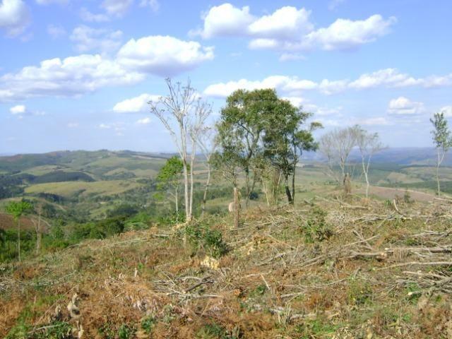 Sítio Barra Grande - 23 alqueires - Bico dos Papagaios - Prudentópolis - PR - vista linda - Foto 2