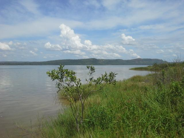 Excelente Área de 51 mil m² C/ 70 metros Beira Lago Km 29 Estrada Lajeado - Foto 3