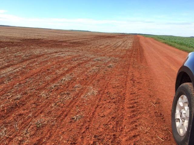 1900 Hectares, 1800 hectares lavoura, lavoura soja e algodão, Diamantino ?MT - Foto 4