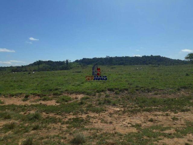 Fazenda à venda, por R$ 40.000.000 - Zona Rural - Rolim de Moura/RO - Foto 11