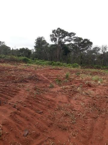 Fazenda de 750 Hectares ?Nova Maringá-MT, Troca imóveis em Campo Novo, Tangara - Foto 4