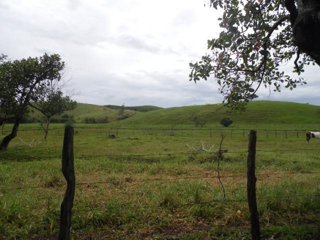 Fazenda 30 alqueires em Casimiro de Abreu-RJ - Foto 2