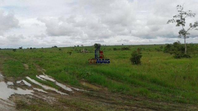 Fazenda à venda, por R$ 40.000.000 - Zona Rural - Rolim de Moura/RO - Foto 14
