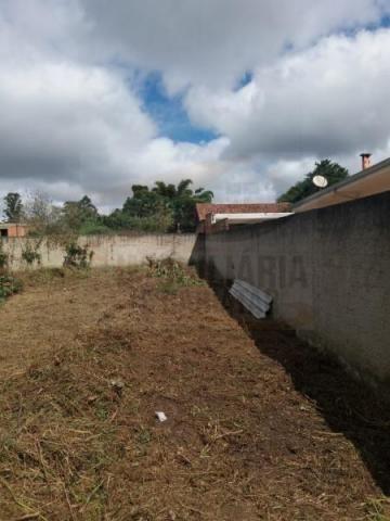 Terreno para venda em quatro barras, jardim das acácias, 2 dormitórios, 1 banheiro - Foto 10