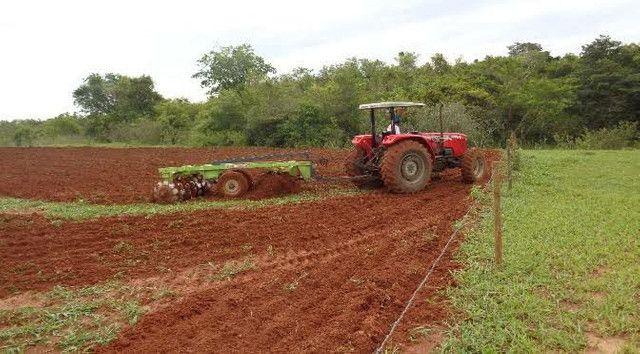 Fazenda  Arrendamento no Ms 900 ha - Foto 3